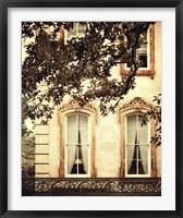 Framed Savannah Charm I