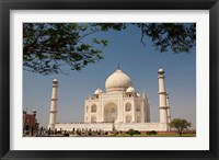 Framed Asia, India, Taj Mahal with trees above as framing element