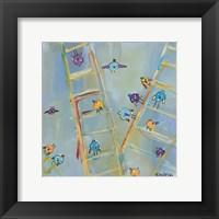 Framed Climb or Fly?