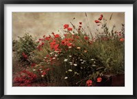 Framed Poppy Garden