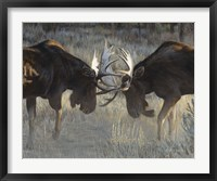 Framed Moose Challenge