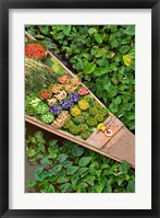 Framed Detail of Boat in Water Lilies, Floating Market, Bangkok, Thailand