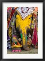 Framed Elephant Festival, Jaipur, Rajasthan, India