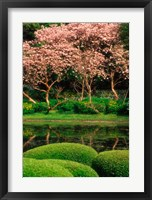 Framed Reflecting Pond, Imperial Palace East Gardens, Tokyo, Japan