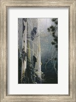 Framed Silent Sentinel (Owl)