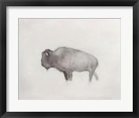 Framed Buffalo (right)