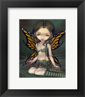 Framed Fairy with Dried Flowers