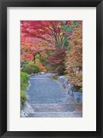 Framed Tenryuji Temple Garden, Sagano, Arashiyama, Kyoto, Japan