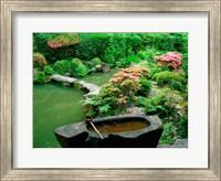 Framed Green Zen Garden, Kyoto, Japan