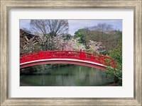 Framed Spring Season, Kyoto, Japan
