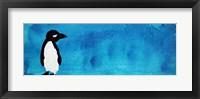 Framed Blue Penguin III
