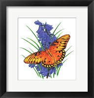 Framed Brilliant Eye Jewel Butterfly-II