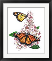 Framed Monarch Butterfly-II