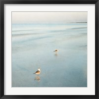 Framed Two Birds on Beach