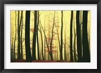 Framed Red Leaves