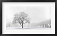 Framed Standing Alone