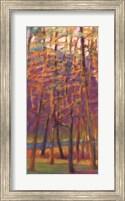 Framed Orange and Red Woods I
