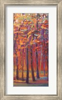Framed Orange and Red Woods II