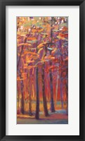Framed Orange and Red Woods II