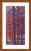 Framed Orange and Red Woods III