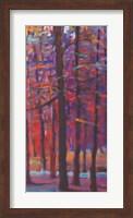 Framed Orange and Red Woods III
