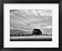 Framed Misty Weather IV