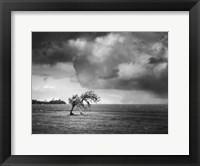 Framed Misty Weather V