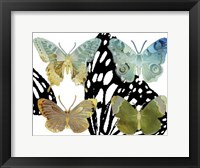 Framed Layered Butterflies IV