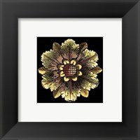 Framed Rosette on Black I