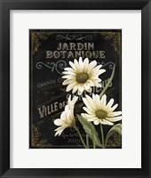 Small Botanical Collection I Framed Print