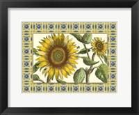 Classical Sunflower I Framed Print