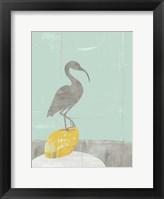 Heron Collage II Framed Print