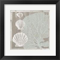 Seaboard I Framed Print