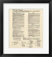 Framed Constitution Document