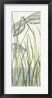 Framed Gossamer Dragonflies I