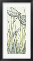 Gossamer Dragonflies II Framed Print