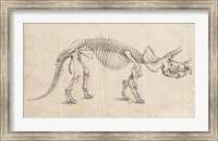 Framed Dinosaur Study II