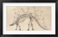 Framed Dinosaur Study III