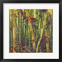 Framed Bamboo Grove I