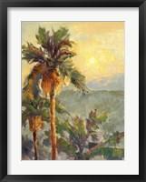 Framed Desert Repose VII