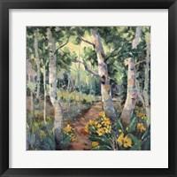 Framed Four Seasons Aspens II