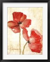 Framed Vivid Red Poppies IV