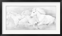 All the White Horses Framed Print