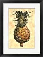 Framed Pineapple Splendor I