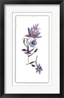 Framed Floral Watercolor IV