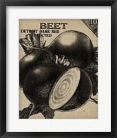 Vintage Seed Pack III Framed Print