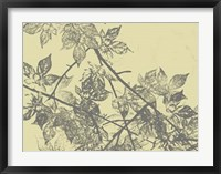 Grey Leaves I Framed Print