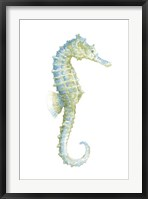 Watercolor Seahorse I Framed Print