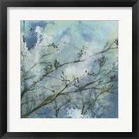 Moonlit Branches I Framed Print