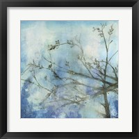 Moonlit Branches II Framed Print
